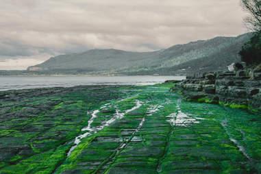 Tessellated Pavement, Pirates Bay