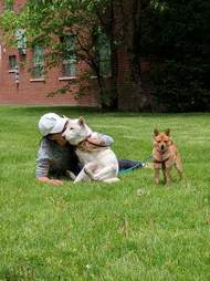 Ek Park with two rescue dogs from South Korea