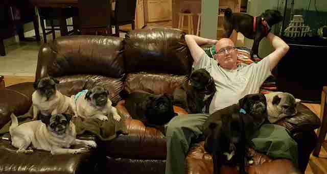Man and his rescue dogs
