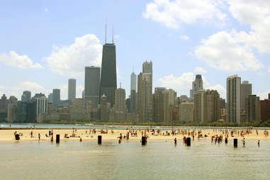 Dog beach chicago