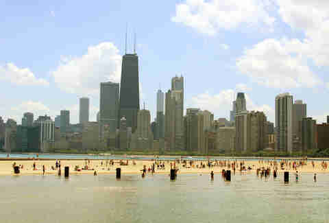 Dog Beach Chicago