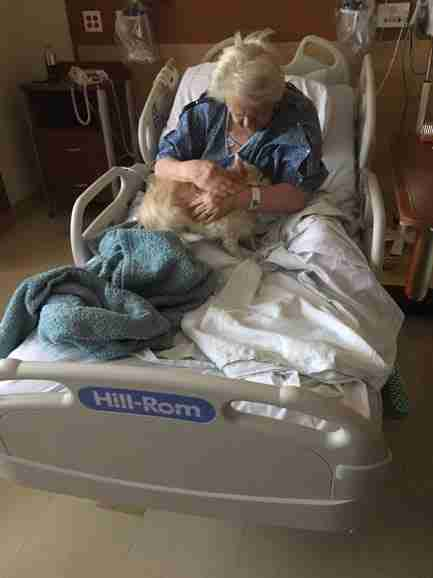 Dog visiting older woman in hospital