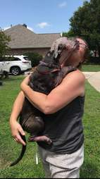Woman hugging rescued dog