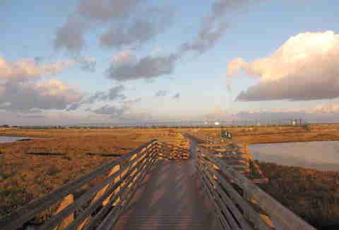 Bolsa Chica Ecological Reserve Footbridge