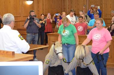 Mini horse deputies