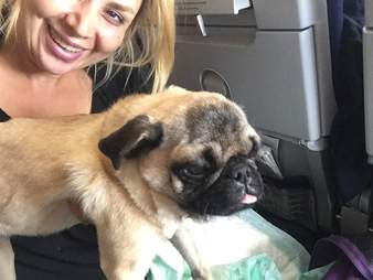 Woman with rescued pug
