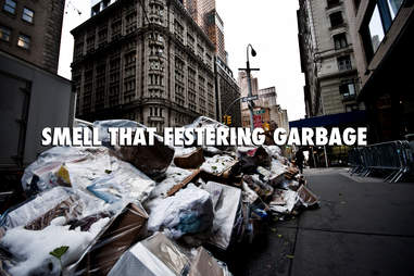 Garbage New York Summer