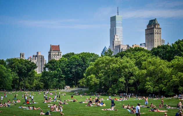 The 16 Best Things to Do in Central Park