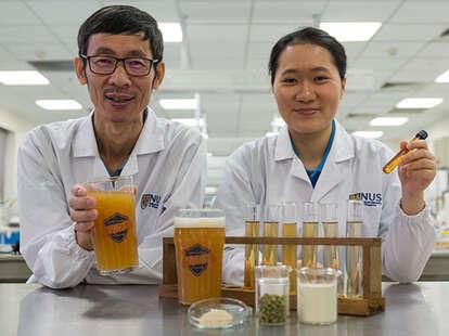 scientists develop probiotic beer