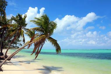 Punta Cana Punta Cana, Dominican Republic