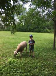 boy with rescued sheep