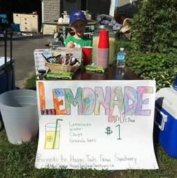 Boy's lemonade stand helps rescued farm animals