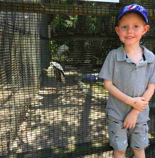 Boy meets bird at sanctuary