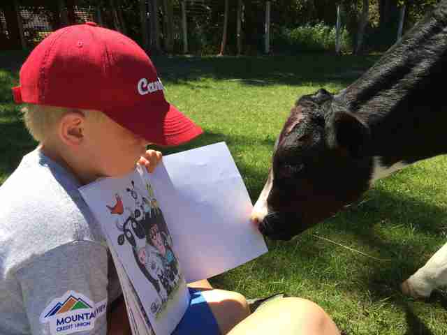 Boy reads to cow saved from slaughter