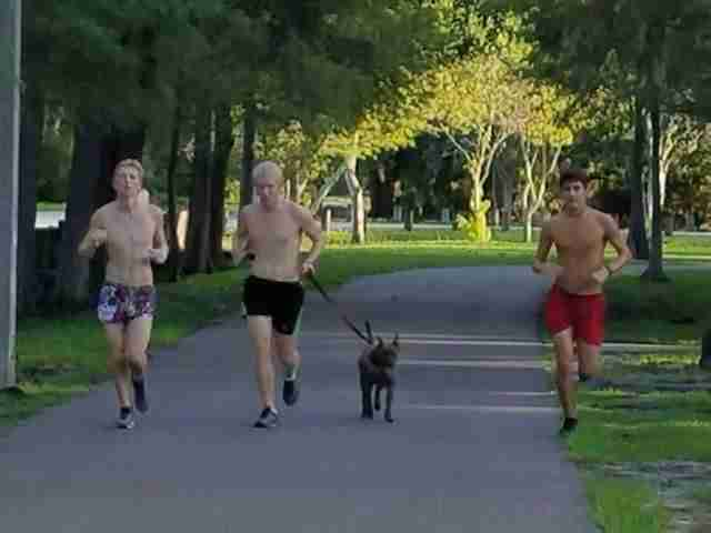 Boys running with shelter dog