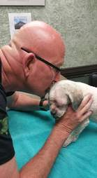Man kissing rescue dog