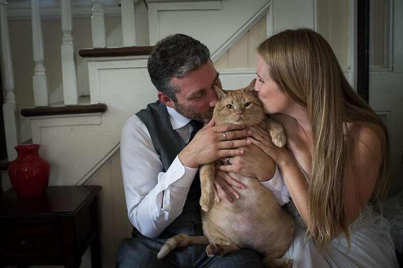 Couple kissing fat cat