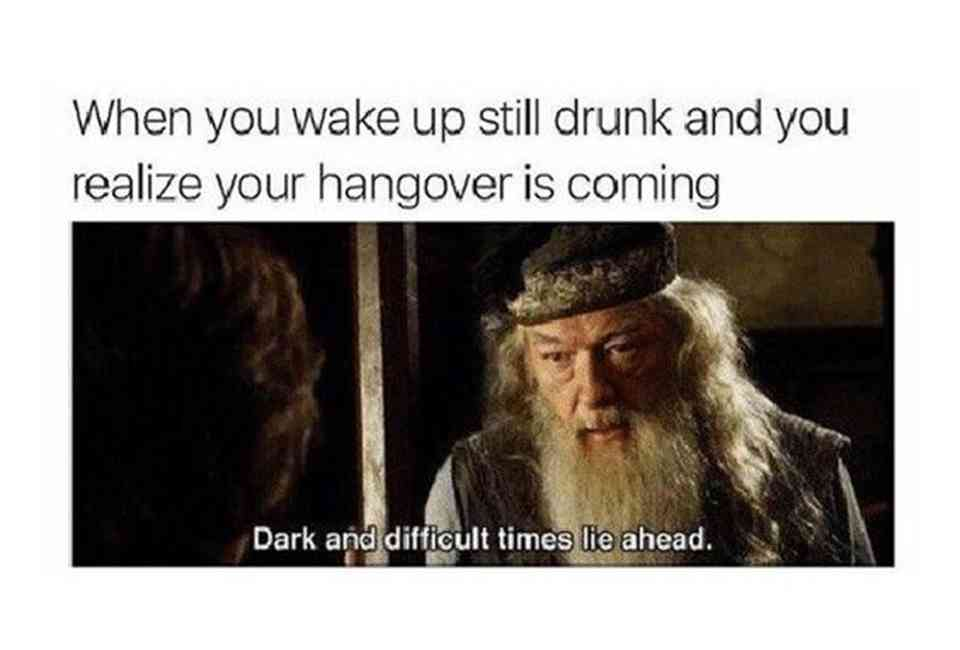 Funny Hangover Memes: The Stages of a Hangover Told in Memes