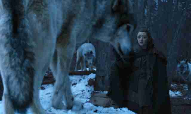 arya nymeria game of thrones season 7