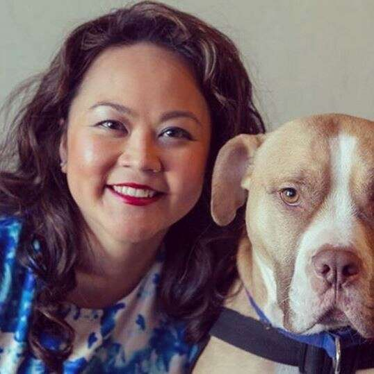 service pit bull and owner