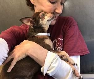 Woman snuggling senior blind dog