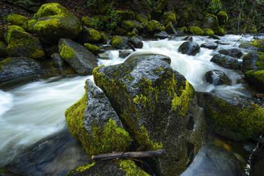 Lithia Park Waterfalls