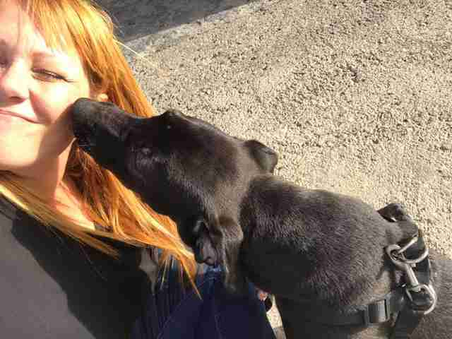 Rescued puppy licking woman
