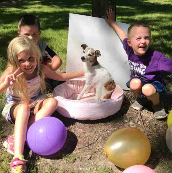 kids throw party for dying foster dog