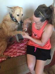 Woman cutting rescue dog's nails