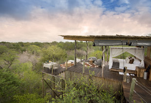 Incredibly Cool Treehouse Hotels To Daydream About Right Now
