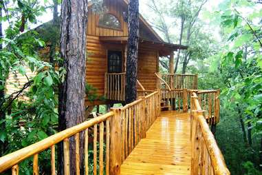 The Original Treehouse Cottages