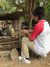 Person helping dog in cage