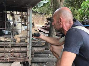 Man helping dog in cage