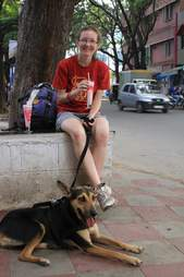 indian street dog loves to travel