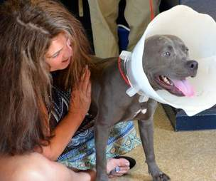 Woman helping abandoned dog