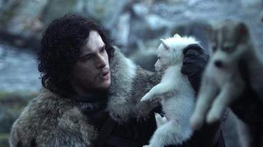 Actor holding up husky in Game of Thrones