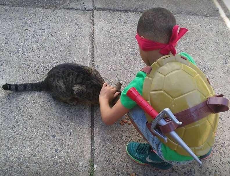 Little boy petting street cat
