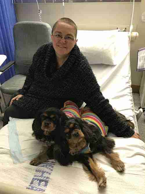 Therapy dogs visiting woman in hospital