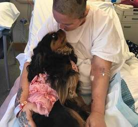 Therapy dog visiting woman in hospital