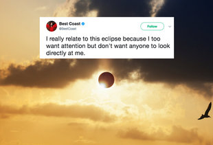 People Had Strangely Hilarious Reactions to the Solar Eclipse