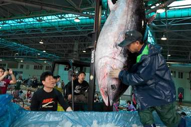 A bluefin tuna being sold at a market