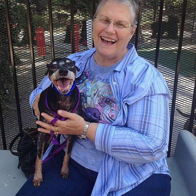Woman holding shelter dog