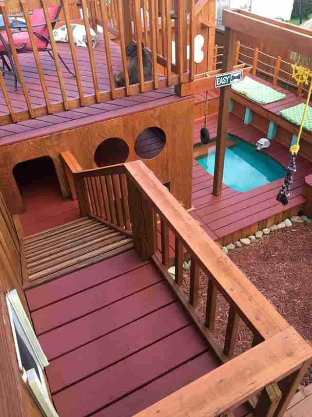 Backyard Dog Playground guy turns backyard into a huge dog playground - the dodo