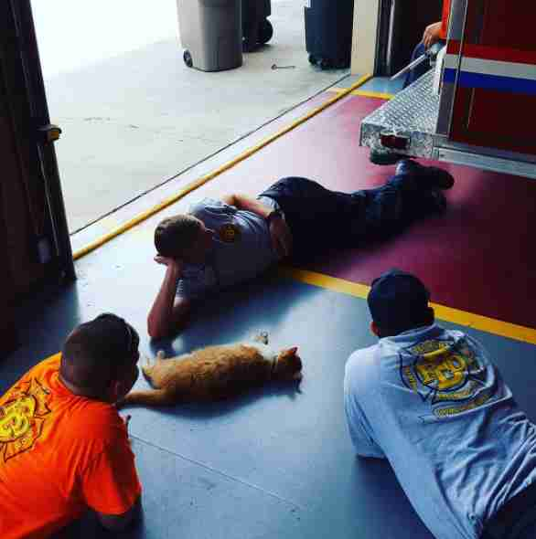 Firefighters cuddling with Flame on floor