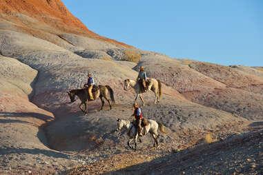 horses in wyoming