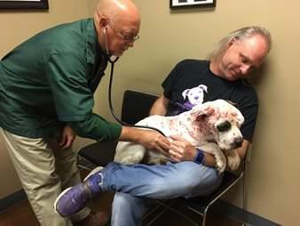 Man holding injured dog at vet