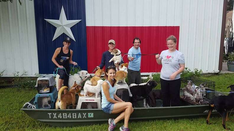 People and rescue dogs in front of barn
