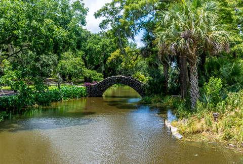 New Orleans City Park Flickr Matthew Warner