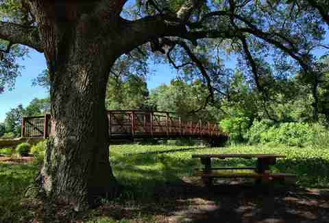 Things To Do In City Park New Orleans Thrillist