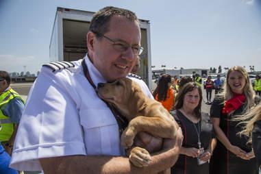 southwest animal rescue